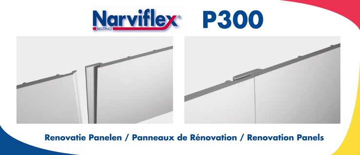 P300-Renovatiepanelen